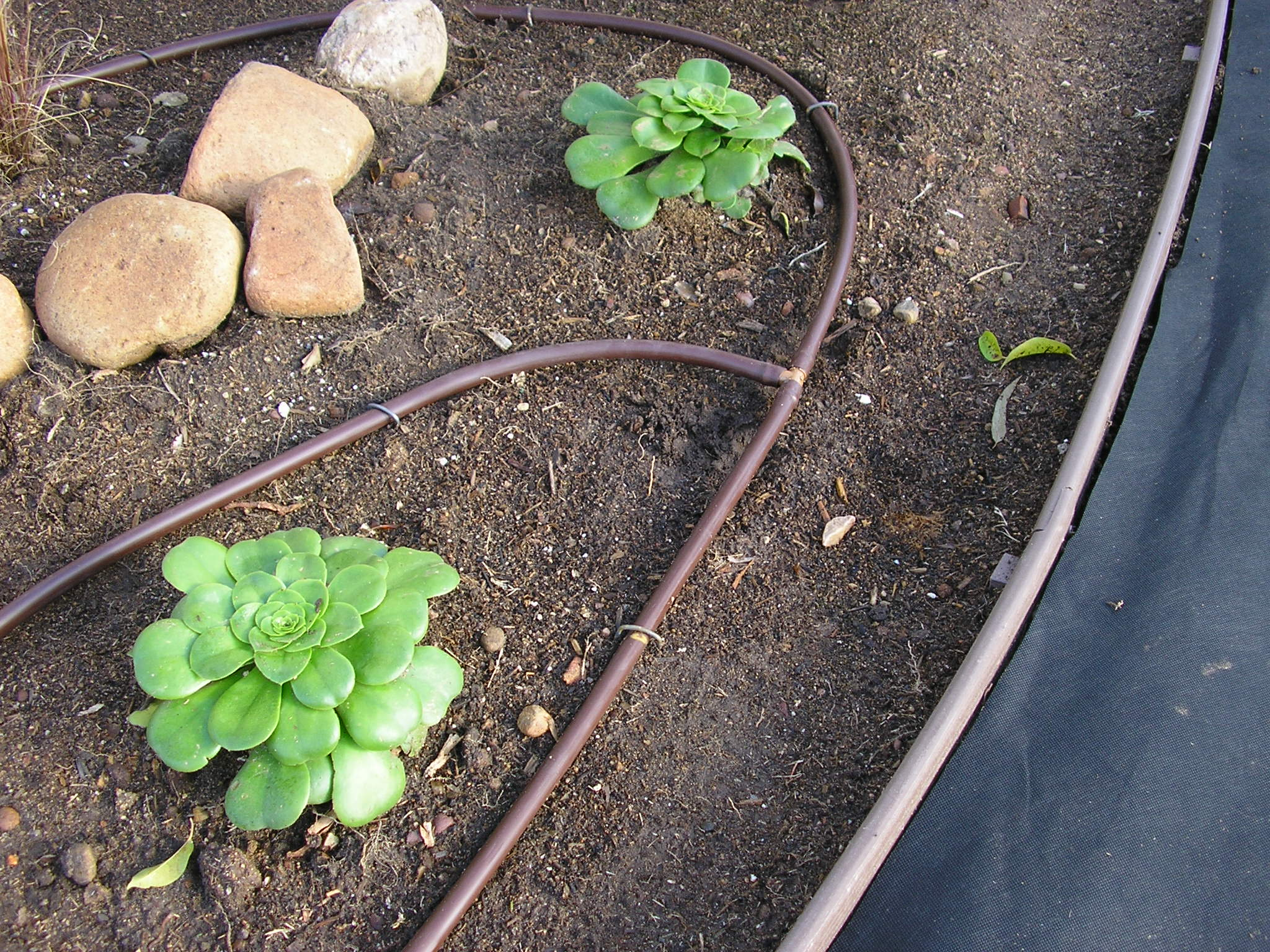 Drip irrigation design installation guide - Hunter Industries